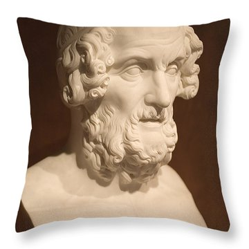 Throw Pillow featuring the photograph Bust Of Homer by Mark Greenberg