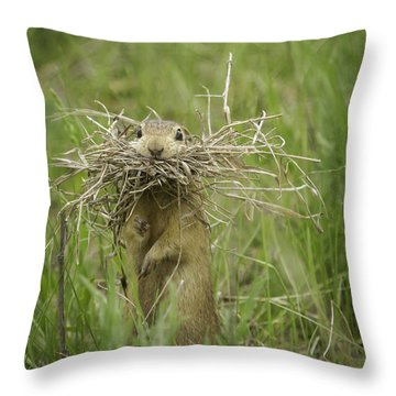 Busted Throw Pillow by Thomas Young