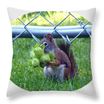 Throw Pillow featuring the photograph Busted by Will Borden
