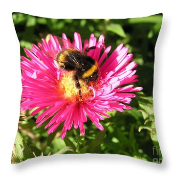 Busy Bee Throw Pillow by Bev Conover