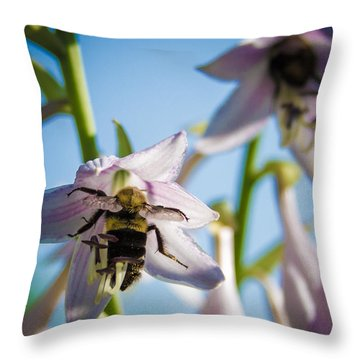 Busy Bee Throw Pillow by Brian Caldwell