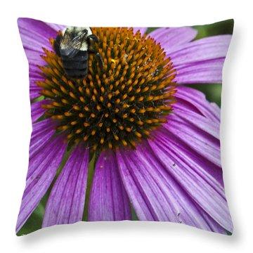 Busy Bee Throw Pillow by Deborah Klubertanz