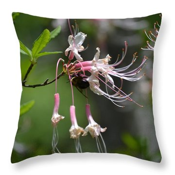 Throw Pillow featuring the photograph Busy Bee by Tara Potts