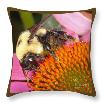 Busy Busy Throw Pillow