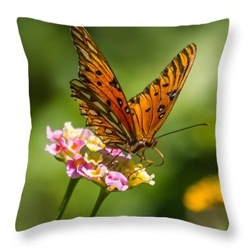 Busy Butterfly Throw Pillow by Jane Luxton