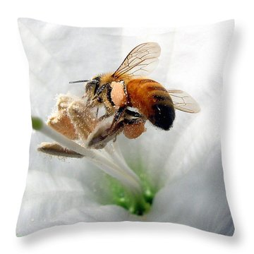 Throw Pillow featuring the photograph Busy by Joyce Dickens