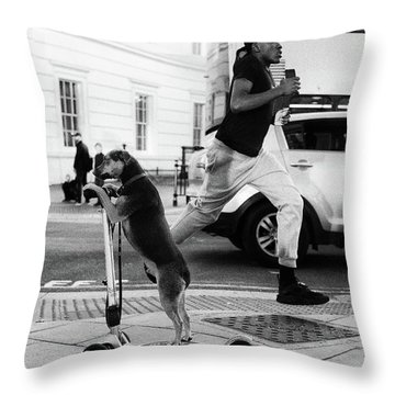 Animal Kingdom Throw Pillows