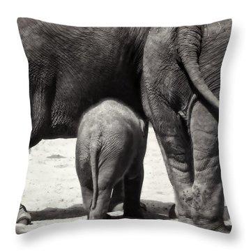 Butt Butt Butt Throw Pillow by Joan Carroll