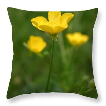 Buttercup Collection Photo 1 Throw Pillow