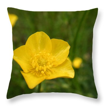 Buttercup Collection Photo 2 Throw Pillow