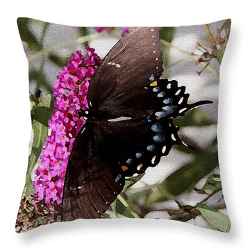 Throw Pillow featuring the photograph Butterflies Are Free by James C Thomas