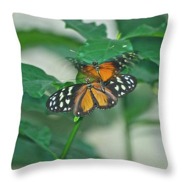Throw Pillow featuring the photograph Butterflies Gentle Touch by Thomas Woolworth