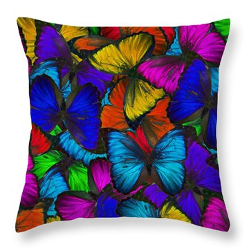 Throw Pillow featuring the photograph Butterflies In Flight Panorama by Kyle Hanson