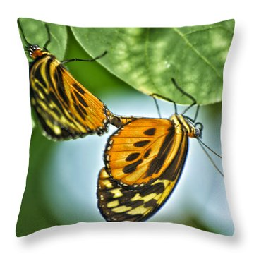 Throw Pillow featuring the photograph Butterflies Mating by Thomas Woolworth