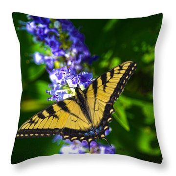 Butterflly Bush And The Swallowtail Throw Pillow by Sandi OReilly