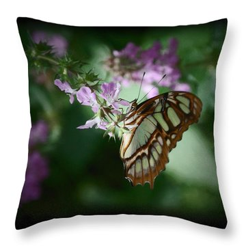 Throw Pillow featuring the photograph Butterfly 7 by Leticia Latocki