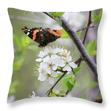 Throw Pillow featuring the photograph Butterfly And Apple Blossoms by Penny Meyers