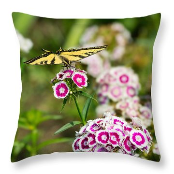 Butterfly And Bloom - Beautiful Spring Flowers And Tiger Swallowtail Butterfly. Throw Pillow by Jamie Pham