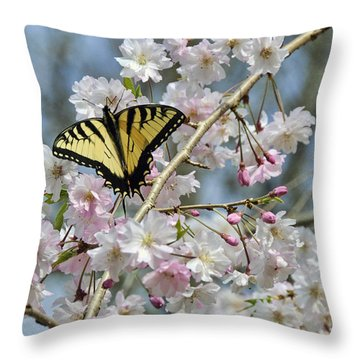 Butterfly And Blooms Throw Pillow by Kenny Francis
