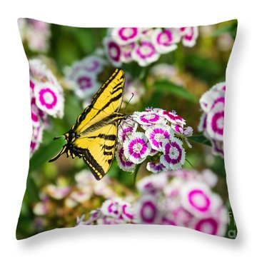 Butterfly And Blooms - Spring Flowers And Tiger Swallowtail Butterfly. Throw Pillow by Jamie Pham