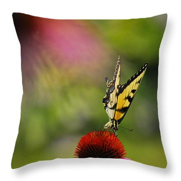 Butterfly And Cone Flower Throw Pillow by Elsa Marie Santoro