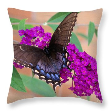 Butterfly And Friend Throw Pillow by Luther Fine Art