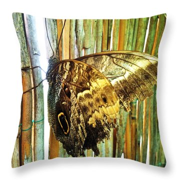 Butterfly And Light Throw Pillow by Beril Sirmacek