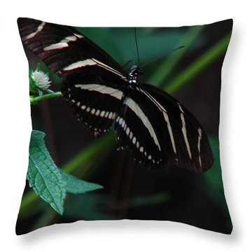 Butterfly Art 2 Throw Pillow by Greg Patzer