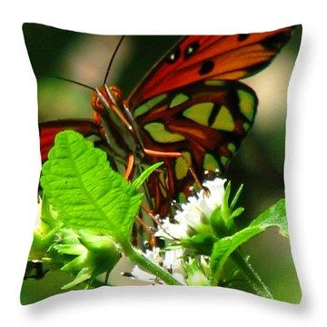 Butterfly Art Throw Pillow by Greg Patzer
