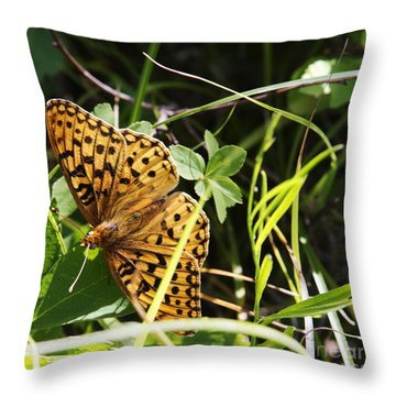 Butterfly At Signal Mountain Throw Pillow by Belinda Greb