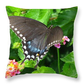 Butterfly Ballot Throw Pillow by Greg Patzer