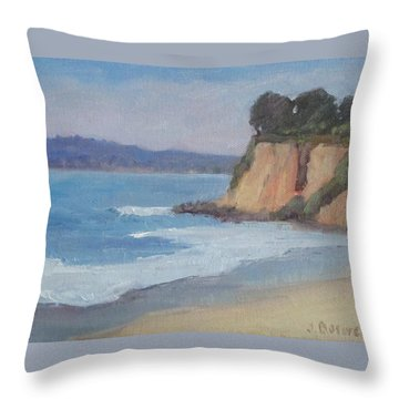 Butterfly Beach Afternoon Series 4 Throw Pillow by Jennifer Boswell