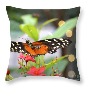Butterfly Beauty Throw Pillow by Carla Carson