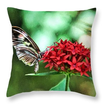 Butterfly Throw Pillow by Bill Howard