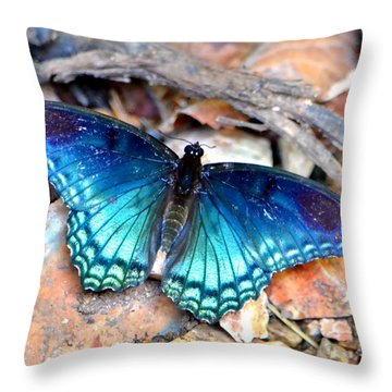 Throw Pillow featuring the photograph Butterfly Blue  by Deena Stoddard