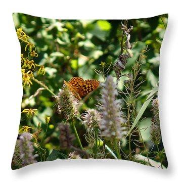 Throw Pillow featuring the photograph Butterfly Buffet by Meghan at FireBonnet Art