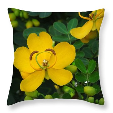 Throw Pillow featuring the photograph Butterfly Cassia by Ron Davidson