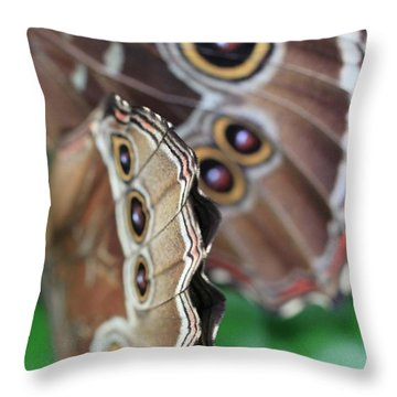Butterfly Close Up  Throw Pillow by AR Annahita