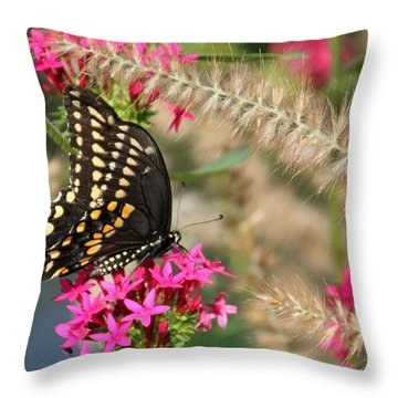 Butterfly Days Throw Pillow by Suzanne Gaff