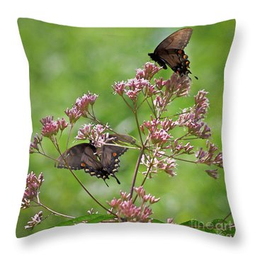 Butterfly Duet  Throw Pillow