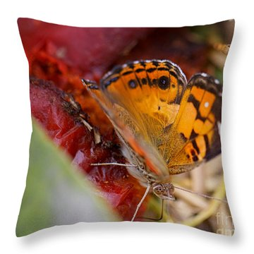 Throw Pillow featuring the photograph Butterfly by Erika Weber