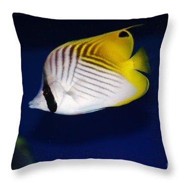 Butterfly Fish Throw Pillow by Craig Wood