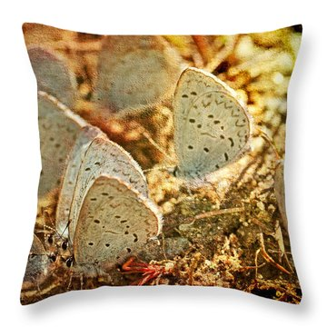 Throw Pillow featuring the photograph Butterfly Gathering by Peggy Collins