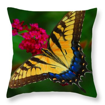 Throw Pillow featuring the photograph Butterfly by Geraldine DeBoer