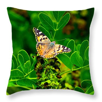 Throw Pillow featuring the photograph Butterfly In Paradise by Gunter Nezhoda