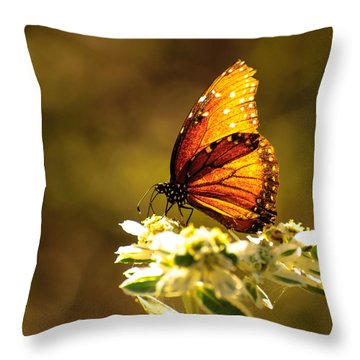 Butterfly In Sun Throw Pillow