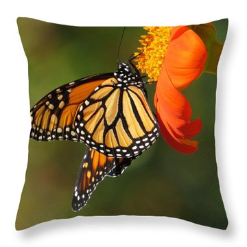 Throw Pillow featuring the photograph Butterfly Kiss 2 by Jeanette Oberholtzer
