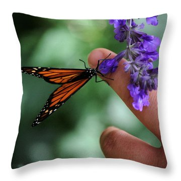 Throw Pillow featuring the photograph Butterfly by Leticia Latocki