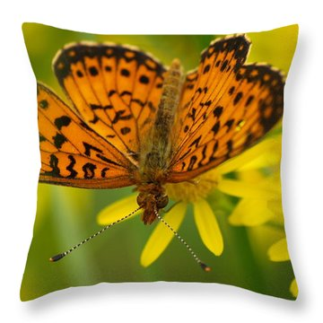 Throw Pillow featuring the photograph Butterfly by James Peterson
