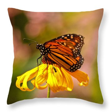 Butterfly Monet Throw Pillow